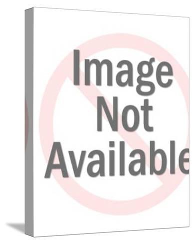 Smug Businessman-Pop Ink - CSA Images-Stretched Canvas Print