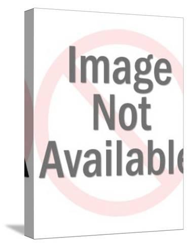 Black Accordion Cat-Pop Ink - CSA Images-Stretched Canvas Print