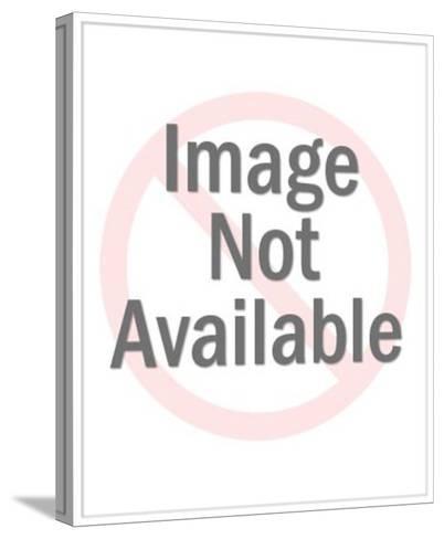 Baseball Catcher Wearing Mitt-Pop Ink - CSA Images-Stretched Canvas Print