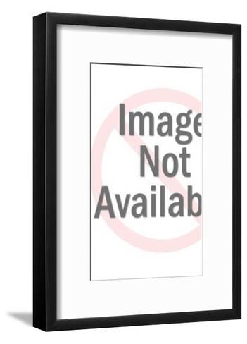 Woman Wearing Undergarments Looking in Mirror-Pop Ink - CSA Images-Framed Art Print