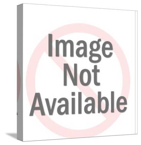 Flashlight Signal Gun-Pop Ink - CSA Images-Stretched Canvas Print