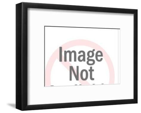 Grey Bull-Pop Ink - CSA Images-Framed Art Print