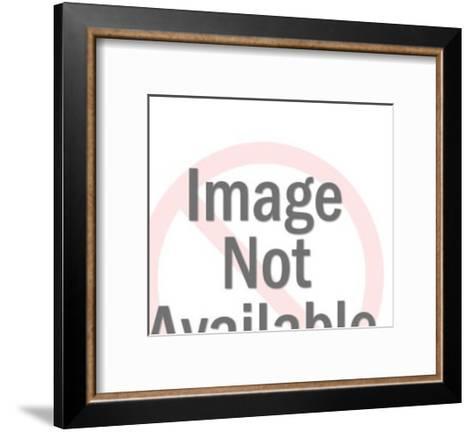 Camel-Pop Ink - CSA Images-Framed Art Print
