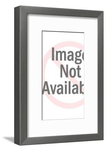 Plastic Astronaut Figurine-Pop Ink - CSA Images-Framed Art Print