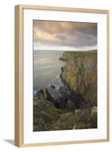 Mull of Galloway, Rhins of Galloway, Dumfries and Galloway, Scotland, UK-Gary Cook-Framed Art Print