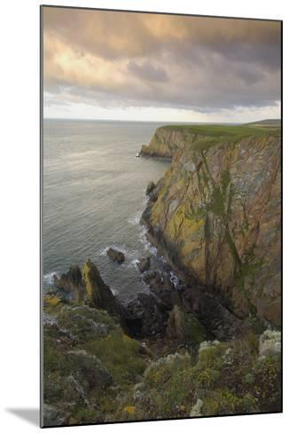 Mull of Galloway, Rhins of Galloway, Dumfries and Galloway, Scotland, UK-Gary Cook-Mounted Photographic Print