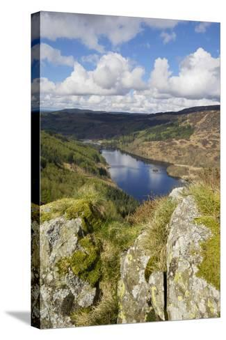 Glen Trool, Seen from White Bennan, Dumfries and Galloway, Scotland, United Kingdom, Europe-Gary Cook-Stretched Canvas Print