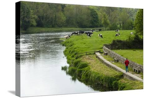 Countryside, County Kilkenny, Leinster, Republic of Ireland (Eire), Europe-Nico Tondini-Stretched Canvas Print