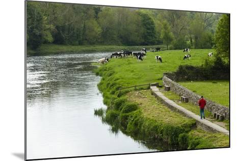 Countryside, County Kilkenny, Leinster, Republic of Ireland (Eire), Europe-Nico Tondini-Mounted Photographic Print