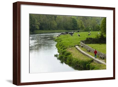 Countryside, County Kilkenny, Leinster, Republic of Ireland (Eire), Europe-Nico Tondini-Framed Art Print