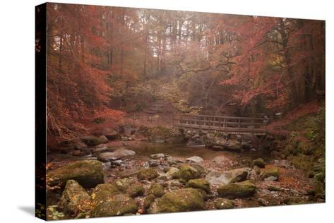 Misty Autumn Valley Near Ambleside, Lake District National Park, Cumbria, England, United Kingdom-Ian Egner-Stretched Canvas Print