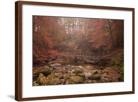 Misty Autumn Valley Near Ambleside, Lake District National Park, Cumbria, England, United Kingdom-Ian Egner-Framed Art Print