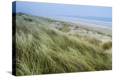 Curracloe Beach, County Wexford, Leinster, Republic of Ireland (Eire), Europe-Nico Tondini-Stretched Canvas Print