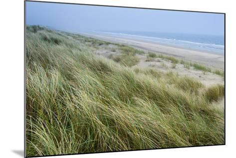 Curracloe Beach, County Wexford, Leinster, Republic of Ireland (Eire), Europe-Nico Tondini-Mounted Photographic Print