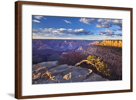 Pipe Creek Vista Point Overlook, South Rim, Grand Canyon Nat'l Park, UNESCO Site, Arizona, USA-Neale Clark-Framed Art Print