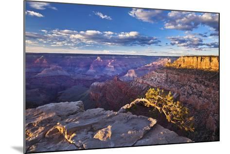 Pipe Creek Vista Point Overlook, South Rim, Grand Canyon Nat'l Park, UNESCO Site, Arizona, USA-Neale Clark-Mounted Photographic Print