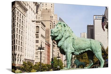 One of Two Iconic Bronze Lion Statues Outside the Art Institute of Chicago, Chicago, Illinois, USA-Amanda Hall-Stretched Canvas Print