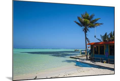 Turquoise Water Lac Bay, Bonaire, ABC Islands, Netherlands Antilles, Caribbean, Central America-Michael Runkel-Mounted Photographic Print