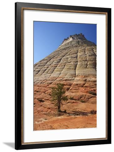 Checkerboard Mesa, Formed of Navajo Sandstone, Zion National Park, Utah, United States of America-Peter Barritt-Framed Art Print