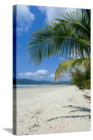Beautiful Sand Beach, Cape Tribulation, Queensland, Australia, Pacific-Michael Runkel-Stretched Canvas Print