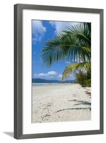 Beautiful Sand Beach, Cape Tribulation, Queensland, Australia, Pacific-Michael Runkel-Framed Art Print