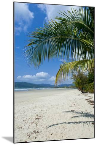 Beautiful Sand Beach, Cape Tribulation, Queensland, Australia, Pacific-Michael Runkel-Mounted Photographic Print