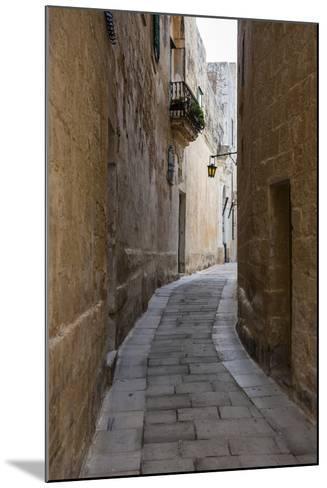 The Town of Imdima (Mdina), Malta, Europe-Michael Runkel-Mounted Photographic Print