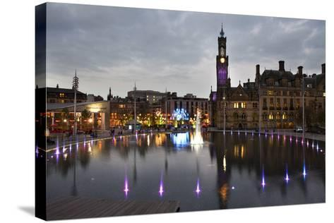 Bradford City Park and Garden of Light Display, Centenary Sq, Bradford, West Yorkshire, England, UK-Mark Sunderland-Stretched Canvas Print