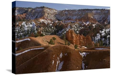 Snow-Dusted Landscape of Hills, Rock Formations and Pine Trees-Norbert Rosing-Stretched Canvas Print