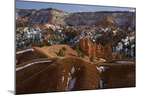 Snow-Dusted Landscape of Hills, Rock Formations and Pine Trees-Norbert Rosing-Mounted Photographic Print