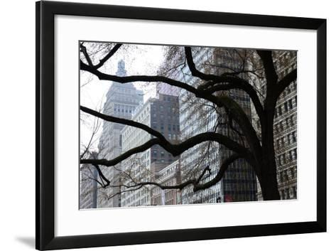 Buildings on Michigan Avenue Through a Leafless Tree in Early Spring-Paul Damien-Framed Art Print