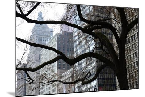 Buildings on Michigan Avenue Through a Leafless Tree in Early Spring-Paul Damien-Mounted Photographic Print