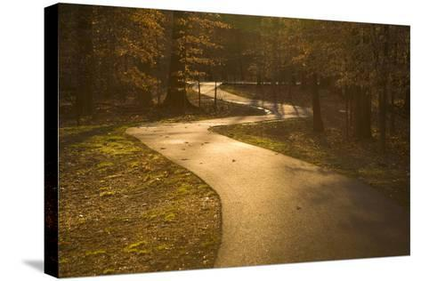 The Winding Matthew Henson Trail, a Greenway for Hikers and Cyclists-Stephen St^ John-Stretched Canvas Print