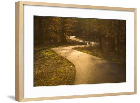 The Winding Matthew Henson Trail, a Greenway for Hikers and Cyclists-Stephen St^ John-Framed Art Print