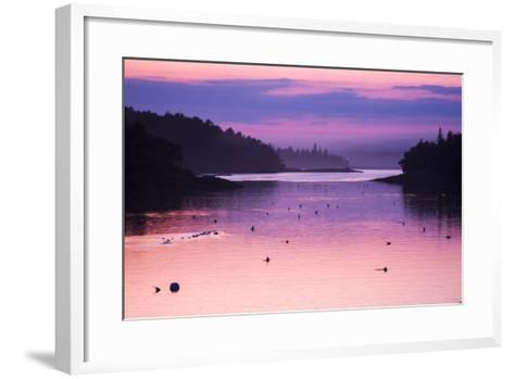 Pink and Purple Sunlight on the Water at Sunset-Jonathan Irish-Framed Art Print
