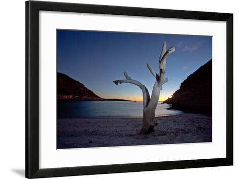 Oddly Placed Driftwood and an Anchored Sailboat in a Secluded Cove-Ben Horton-Framed Art Print