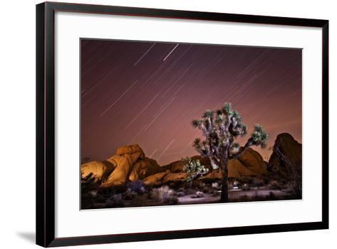 Star Trails over Joshua Trees and Granite Formations in the Desert-Ben Horton-Framed Art Print