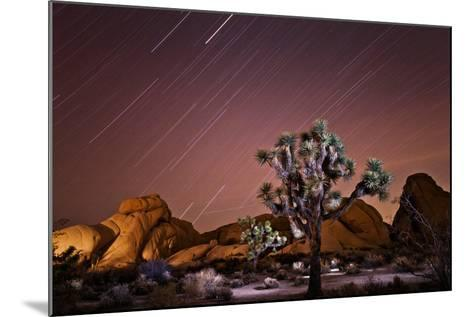 Star Trails over Joshua Trees and Granite Formations in the Desert-Ben Horton-Mounted Photographic Print