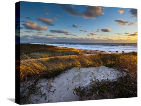 Sunset Along Moshup Beach, Martha's Vineyard with View of Ocean and Grass Blowing During Late Fall-James Shive-Stretched Canvas Print