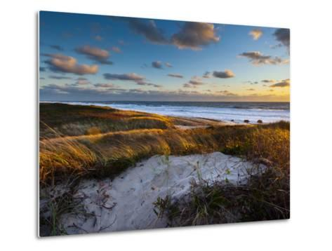 Sunset Along Moshup Beach, Martha's Vineyard with View of Ocean and Grass Blowing During Late Fall-James Shive-Metal Print