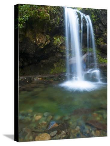 Smoky Mountain Natioanl Park: a Hiker Running Behind Grotto Falls-Brad Beck-Stretched Canvas Print