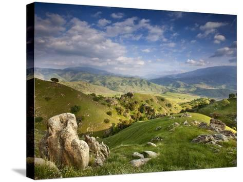 Rolling Green Hills of Central California No.4-Ian Shive-Stretched Canvas Print