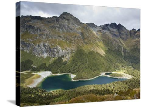The Routeburn Trak in Mount Aspiring National Park Located in Ne-Sergio Ballivian-Stretched Canvas Print