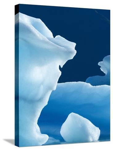 Icebergs Floating in Alsek Lake. Glacier Bay National Park, Ak.-Justin Bailie-Stretched Canvas Print