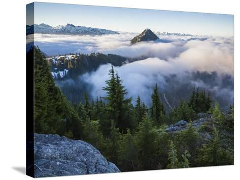 North Cascades National Park, Washington-Ethan Welty-Stretched Canvas Print