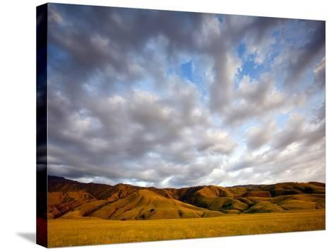 Near Caliente, California: Sunset on the Northern Most Edge of the Tejon Ranch at Sunset.-Ian Shive-Stretched Canvas Print