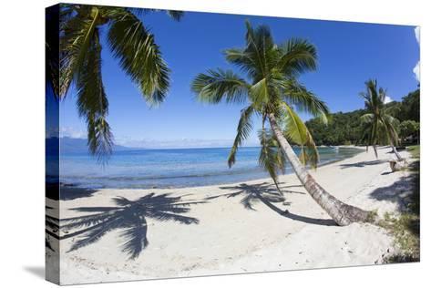 Beach, Waitatavi Bay, Vanua Levu, Fiji-Douglas Peebles-Stretched Canvas Print