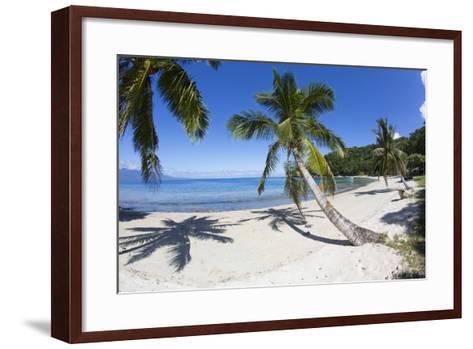 Beach, Waitatavi Bay, Vanua Levu, Fiji-Douglas Peebles-Framed Art Print