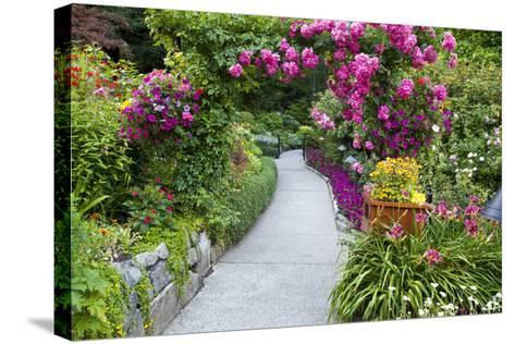 Rose Garden at Butchard Gardens in Full Bloom, Victoria, British Columbia, Canada-Terry Eggers-Stretched Canvas Print