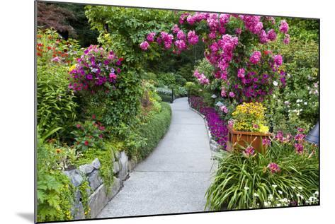 Rose Garden at Butchard Gardens in Full Bloom, Victoria, British Columbia, Canada-Terry Eggers-Mounted Photographic Print